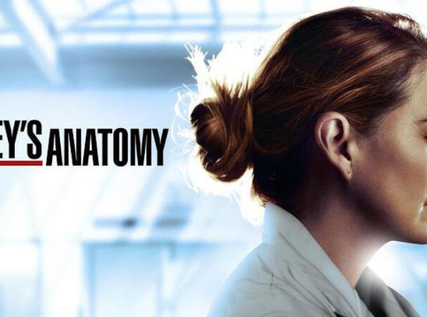 Grey's Anatomy Season 17 Spoilers
